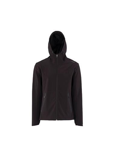 Lumberjack Luka Akordeon Top Erkek Sweatshirt Renkli